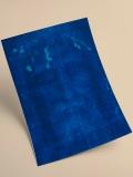 Lámina Negativo del Rostro (DIN A4)